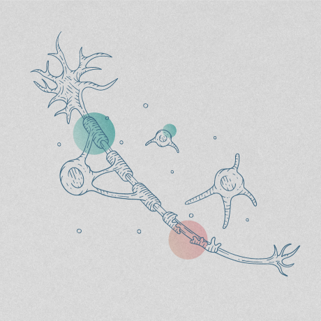 Illustration of neuron against backdrop of colored circles.